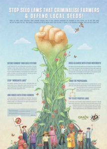 Seeds in the Hands of Farmers